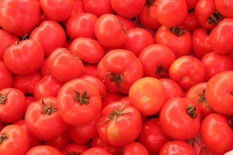 tomaten solanum lycopersicum sorten. Black Bedroom Furniture Sets. Home Design Ideas